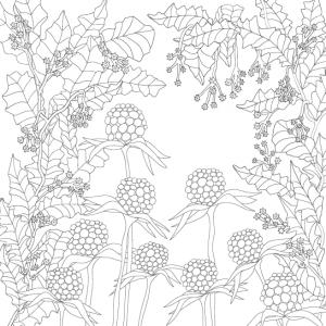 Wunderblumen Postkarte No2